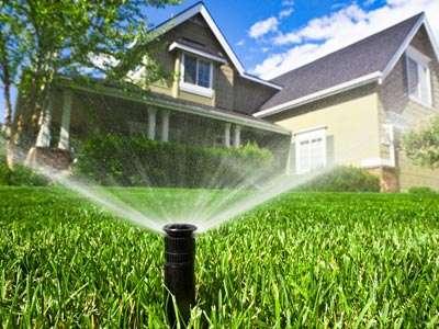 The Big Gator Sprinkler Services in Southwest Florida